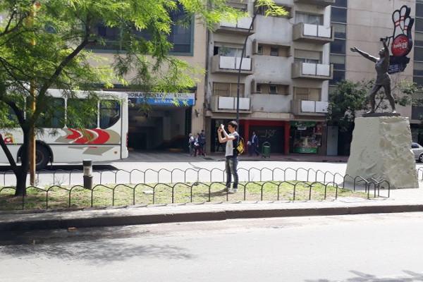 Estudiantes de la FCA-UNC censan el arbolado urbano cordobés