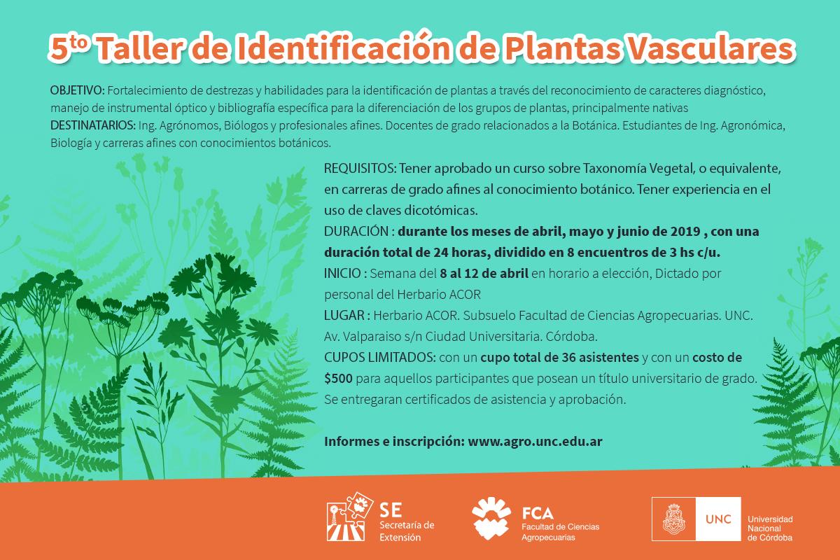 5to Taller de Identificación de Plantas Vasculares