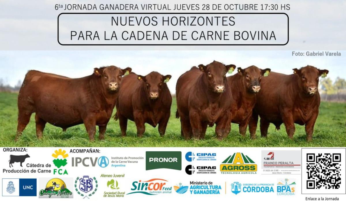 """Llega la 6ª Jornada: """"Nuevos Horizontes para la Cadena de Carne Bovina"""""""