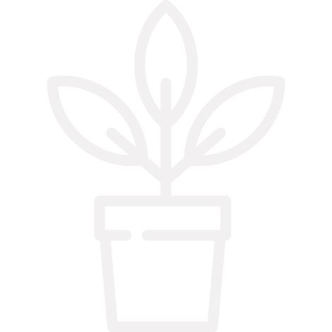 icono-planta-maceta