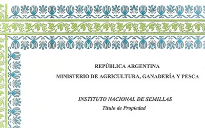 Cultivar de Vicia Dasycarpa Ten – reg. nº 1242