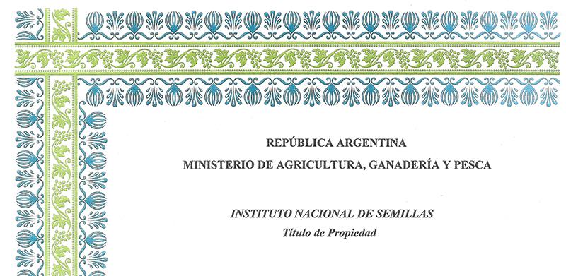 Cultivar de Triticale – reg. nº 3353