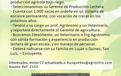 OFERTA LABORAL – GERENTE DE PRODUCCIÓN DE TAMBO – SAN LUIS