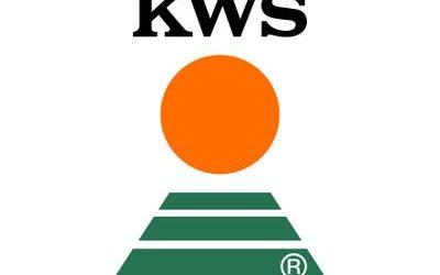 OFERTA LABORAL – DISTRIBUIDOR DE KWS